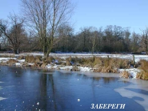 Копия Cow-pond-winter-2003