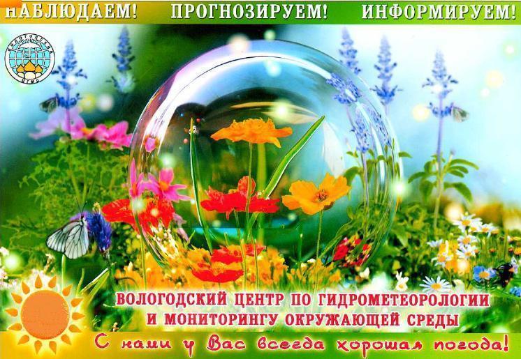 Погода в селе орловка ставропольского края