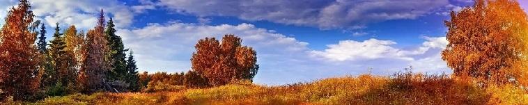 слайдер 1 осень