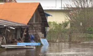 грязовецкий затопления